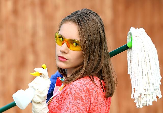eva persson skriver om rengøring